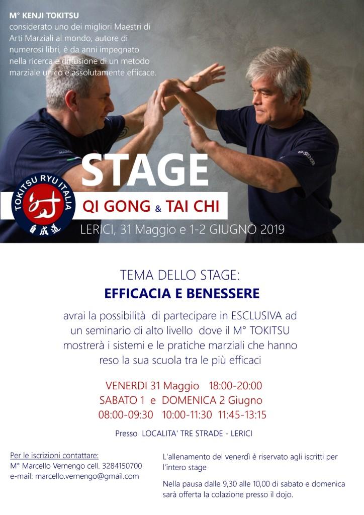 Stage_rev2_Lerici